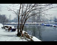 Neve a Ticino (alfvet) Tags: winter snow ticino nikon fiume neve inverno d60 parcodelticino veterinarifotografi platinumpeaceaward mygearandmepremium