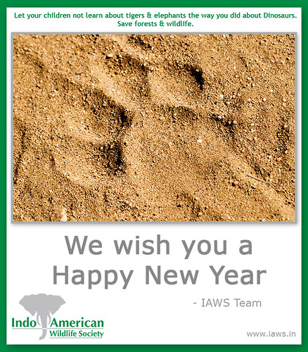 iaws-2010-new-year-wishes-3