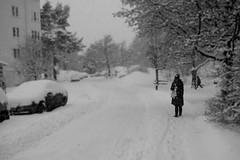 snow street (Tim Bow Phot