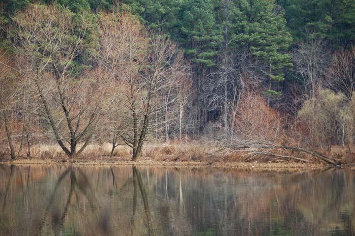 Lake Johnson View