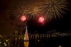 Christmas Tree '09 (alano5678) Tags: christmas longexposure brazil brasil riodejaneiro natal night fireworks lagoon christmastree lagoa ipanema leblon doisirmaos fogosdeartifcio rvoredenatal 2brothers