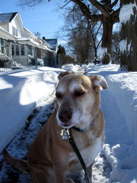 Una Checks out the Snow