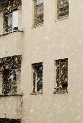 Che gelida manina! (Mnemomaz) Tags: snow rome roma hand neve mano palazzo cade finestre timida manina esplorazione chegelidamanina imppig ammazzaquanta 12febbraio2010 certohefinitapresoper