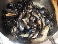 Mussels steaming