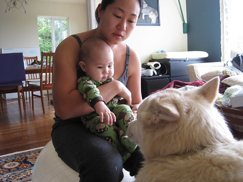 Baby finally shows an interest in Mobi