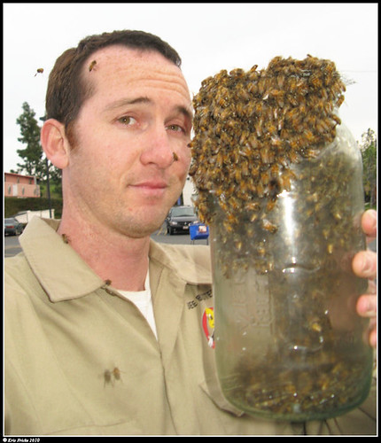 A particularly dashing young chap holding a jar overflowing with bees.  He is not wearing protective clothing and there are a few bees crawling on his face