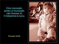 Proverbe 16-26 (Palosi Marton) Tags: kids childrens copii crestine versete biblice
