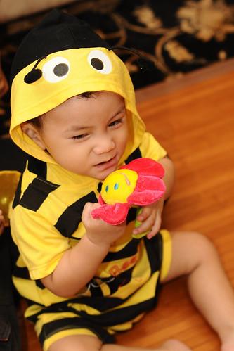 Amirul Bee 4