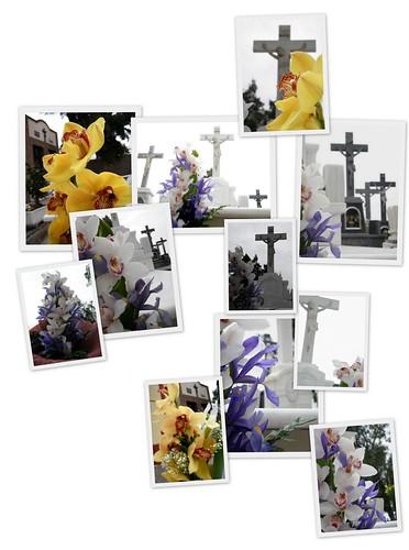 Flores para él