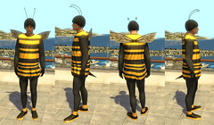 Home Bee Costume