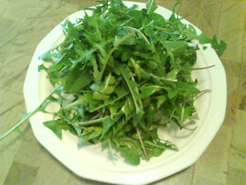Dandelion greens, washed