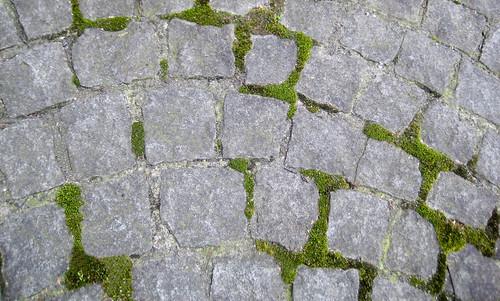 mossycobblestone