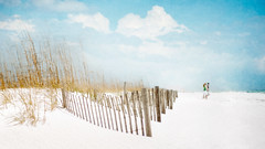 Happy Fence Friday: {  Beach Couple  } Edition! (pixelmama) Tags: sea sun texture love beach fence sand oats gettyimages  beachfence gulfislandsnationalseashore flypaper hff coupleonthebeach pensacolabeachflorida fencefriday cirrusskiesgelatoice