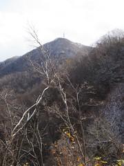 藻岩山の頂が意外と遠く見える