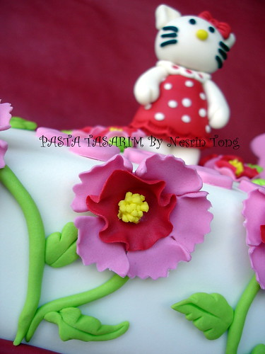 HELLO KITTY CAKE - SUDENAZ