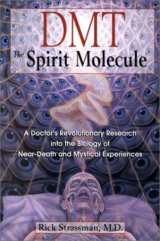DMT the Spirit Molecule by Rick Strassman (art by Alex Grey)