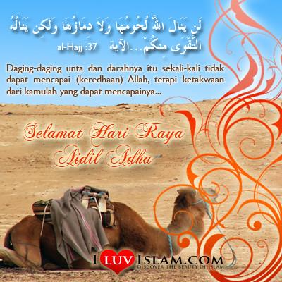 4109524528 e492d25e54 Salam Aidiladha 1431H
