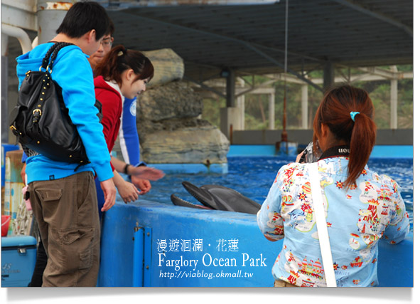 花蓮海洋公園一日遊43