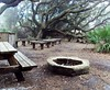 Sea Camp, Cumberland Island, GA (campground)