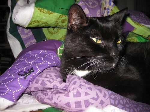 green violet quilt help