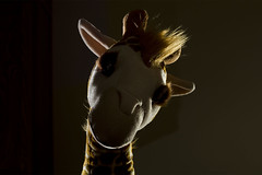 Art 207 - Assignment 7.1 - Still Life - Sinister Giraffe 1