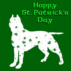 Happy St. Patrick's Day, Pit Bull Dog (Beverly & Pack) Tags: party wallpaper rescue dog white holiday cute green saint st puppy fun funny ast humorous day sitting unique background painted humor free canine save dressedup pitbull terrier american luck lucky creativecommons download killed doggy patricks breed fighting shelter clover shamrocks anti adopt stpatricks staffie reward celebrate shamrock pound doggie clovers videos stpatricksday bsl unlucky banned staffy k9 humanesociety leprechaun pattie rememberwhen pitty fourleaf homour saintpatricksday apbt patricksday march17 euthanized pittie stpattyday breedspecificlegislation