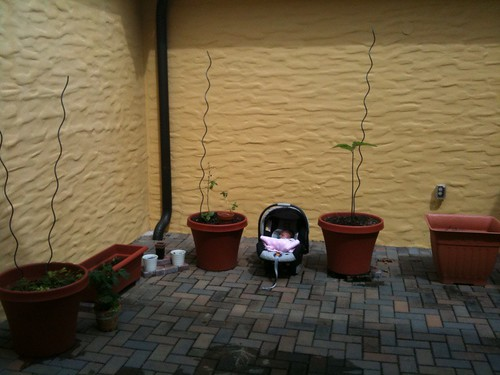 Baby Nora helps plant the container garden. . .sort of.