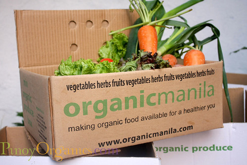 OrganicManila-small box