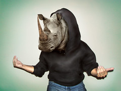 Mr. Rhino (EduardoEquis) Tags: animal head cabeza rhino horn rhinoceros rino rinoceronte cuerno