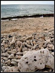 stones (un certain regard1) Tags: sassi mauritus spiaggia gmt