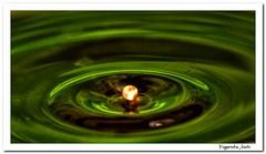 Metallic Drop HDR Way (Yogendra174) Tags: india abstract color reflection green canon waterdrop raw metallic sigma drop 300mm maharashtra ripples liquid hdr joshi marathi yogendra canonrebelxs rawhdr liquidsculpture droppingthings singlefilehdr sigmaapodgmacro70300mm coffeedrop circularaction