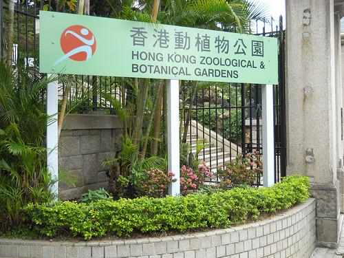 HONG KONG 9906