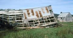 Tin Mine Huts (NettyA) Tags: film 35mm australia slide victoria huts hut bushwalking 1984 scanned slides thepilot charliecarter tinminehuts janettetomsett