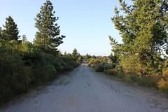 (Krytie TV) Tags: urban abandoned exploring melbourne exploration derelict refinery fuel tanks wasteland urbex