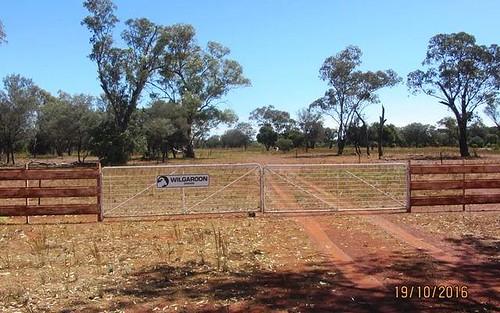 * West Wilgaroon, Cobar NSW