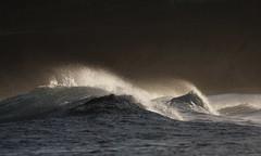 Narrabeen Waves (south*swell) Tags: water break sydney wave australia spray nsw backlit northnarrabeen