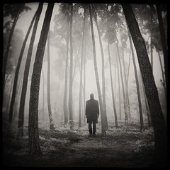 Echo Of Small Things (Midnight - Digital) Tags: wood bw mist tree forest dark square blackwhite mood alone loneliness foggy atmosphere eerie mysterious cinematic