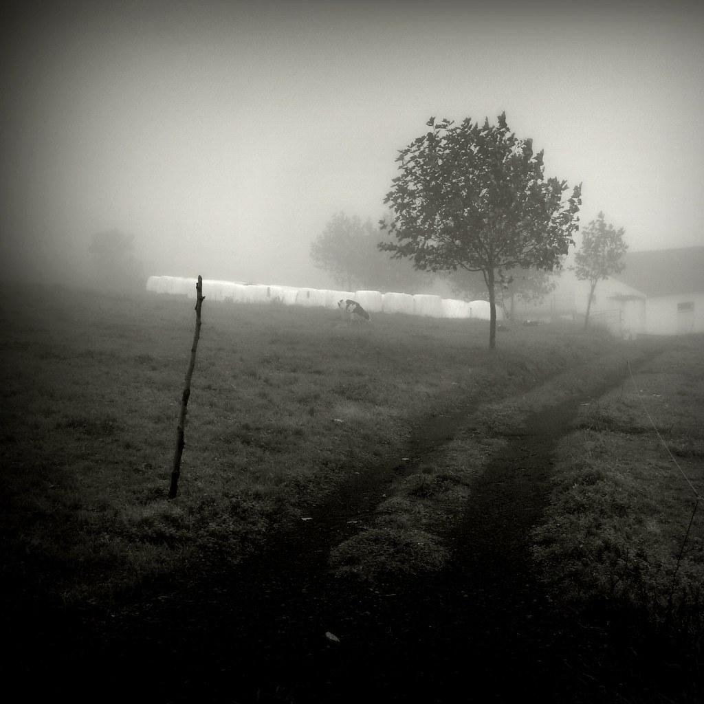 Winter days (2) #P1220792