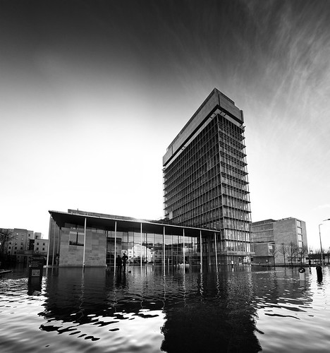 Cork Flood 60