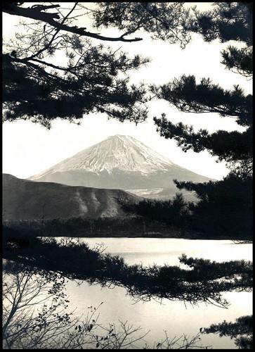MT. FUJI THROUGH PINE BOUGHS in OLD JAPAN