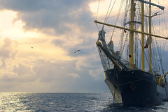 In the love of narrow souls I make many short voyages but in vain - I find no sea room - But in great souls I sail before the wind without a watch, and never reach the shore. (itala2007) Tags: ocean sky sailing ship sail navio itala2007 mastersgallery capturethefinest worldsartgallery