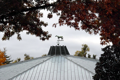 horse-on-a-roof