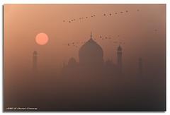 Misty Taj (DanielKHC) Tags: sun india mist birds fog sunrise river interestingness nikon bravo moody taj mahal agra explore fp frontpage d300 yamuna sigma18200mm danielcheong bratanesque danielkhc