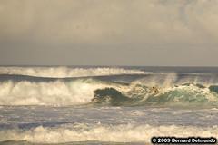 Hawaii 452 (www.Public-Waste.com) Tags: hawaii oahu northshore hi banzaipipeline