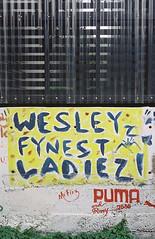 wesley_finest_ladies