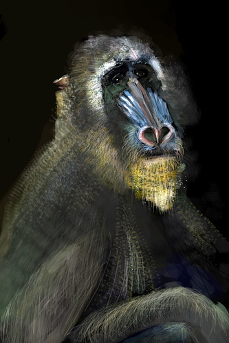Mandrill Female (after Velazquez) John Bavaro