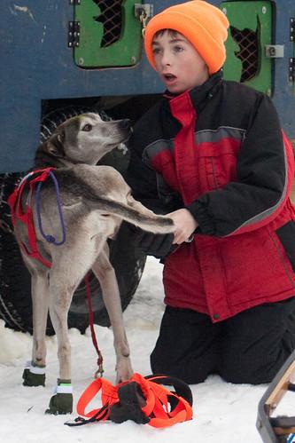 dog sled-25