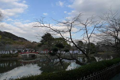 Blue skies at the courtyard of Tsurugaoka Hachiman-gū