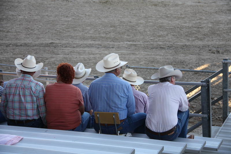 Rodeo Peanut Gallery