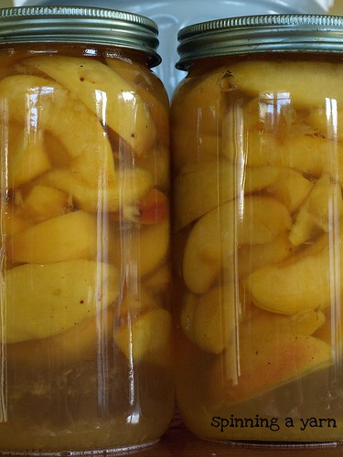 Bottled Peach slices